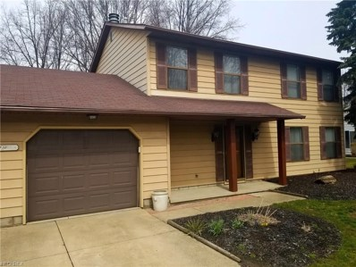 1455 Welch Rd, Painesville Township, OH 44077 - MLS#: 3946019