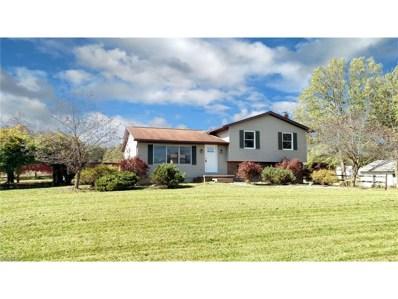 2235 McClintocksburg Rd, Deerfield, OH 44411 - MLS#: 3946279