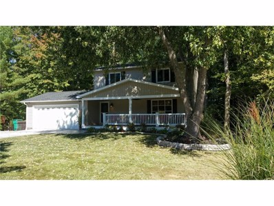 11317 Heritage Dr, Twinsburg, OH 44087 - MLS#: 3946518