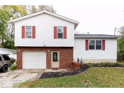 5707 Chippewa Rd, Chippewa Lake, OH 44215 - MLS#: 3946666