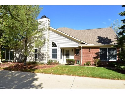 401 Bounty Way UNIT 231, Avon Lake, OH 44012 - MLS#: 3946736
