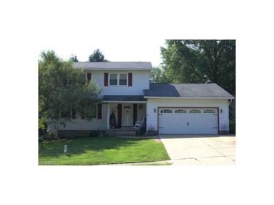 1111 Kieffer St, Wooster, OH 44691 - MLS#: 3946810
