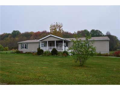 8979 State Route 700, Ravenna, OH 44266 - MLS#: 3947070