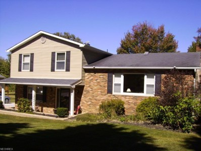 3091 Bird Dr, Ravenna, OH 44266 - MLS#: 3947340