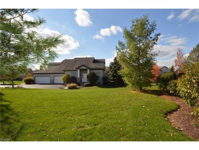 7311 Forest Cove Ln, Northfield, OH 44067 - MLS#: 3948188