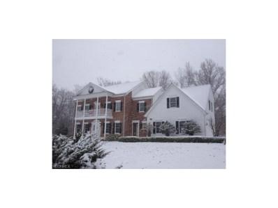 2950 Boston Mills Rd, Richfield, OH 44286 - MLS#: 3948274