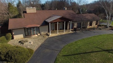 8887 Echo Lake Dr NORTHEAST, Warren, OH 44484 - MLS#: 3948729