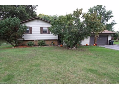 175 Mill Morr, Painesville Township, OH 44077 - MLS#: 3948768