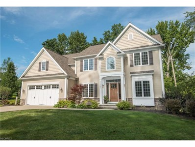 17209 Eastview Dr, Chagrin Falls, OH 44023 - MLS#: 3949045