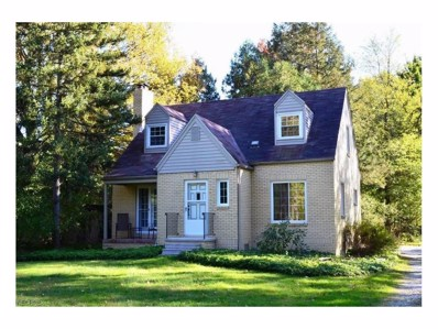 3452 Montrose Ave, Akron, OH 44333 - MLS#: 3950005
