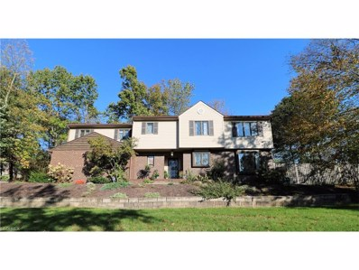 1204 Briarcrest Cir, Wooster, OH 44691 - MLS#: 3950013