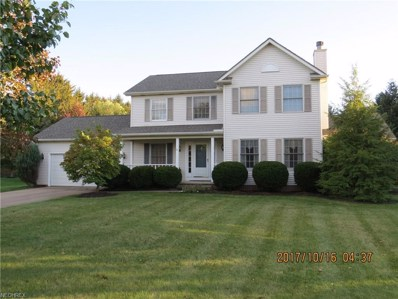 4600 White Angel Dr, Perry, OH 44081 - MLS#: 3950083