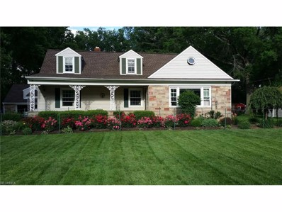 6425 Willow Dr, Independence, OH 44131 - MLS#: 3950432