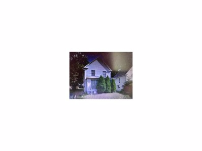453 Lamparter St, Akron, OH 44311 - MLS#: 3950748