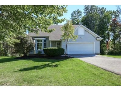 9836 Johnnycake Ridge Rd, Concord, OH 44060 - MLS#: 3951198