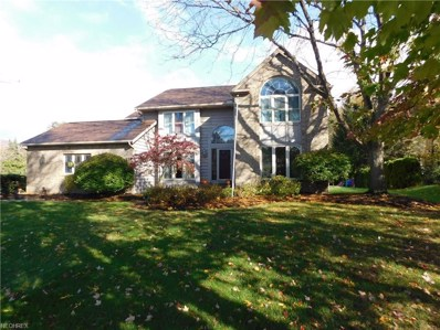 363 Miner Rd, Highland Heights, OH 44143 - MLS#: 3951219