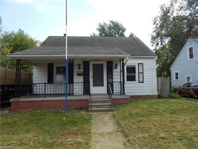 1241 W 19th St, Lorain, OH 44052 - MLS#: 3951279