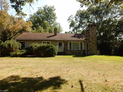 893 Mentor Ave, Painesville, OH 44077 - MLS#: 3951930