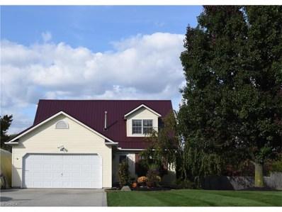 3079 Summit Rd, Ravenna, OH 44266 - MLS#: 3952145
