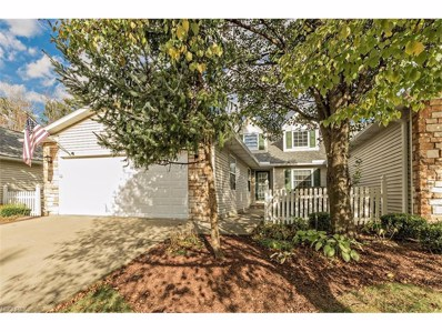 955 Grand View Ln, Aurora, OH 44202 - MLS#: 3952262