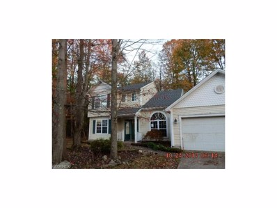 938 Long Shadow Ln, Roaming Shores, OH 44085 - MLS#: 3952430