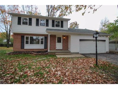 824 Shields Rd, Youngstown, OH 44511 - MLS#: 3952940