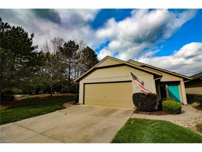 21542 Timber Oak Ct, Strongsville, OH 44149 - MLS#: 3953346