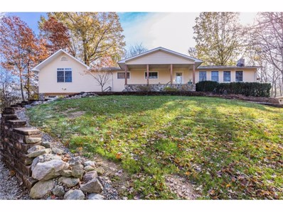 9836 Hoose Rd, Concord, OH 44060 - MLS#: 3953681