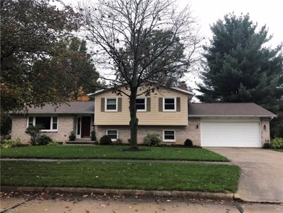 900 Hamilton Ave, Wooster, OH 44691 - MLS#: 3953928