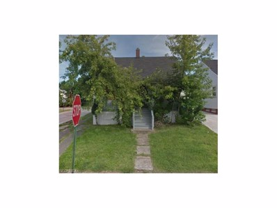 3983 E 121st St, Cleveland, OH 44105 - MLS#: 3953972