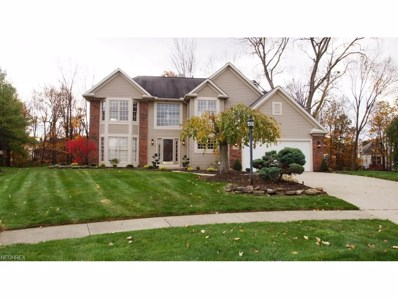 20819 Wakefield Cir, Strongsville, OH 44149 - MLS#: 3954197