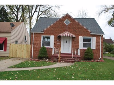 14113 Clifford Ave, Cleveland, OH 44135 - MLS#: 3954582