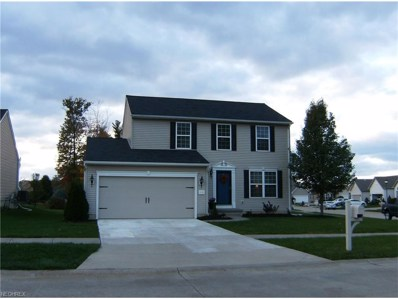 5132 Otten Rd, North Ridgeville, OH 44039 - MLS#: 3955123