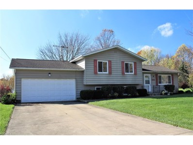 5634 Young Rd, Hudson, OH 44236 - MLS#: 3955281