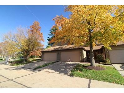 804 Arboretum Cir UNIT 80, Northfield, OH 44067 - MLS#: 3955653