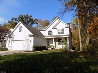 447 Country Walk, Amherst, OH 44001 - MLS#: 3955839