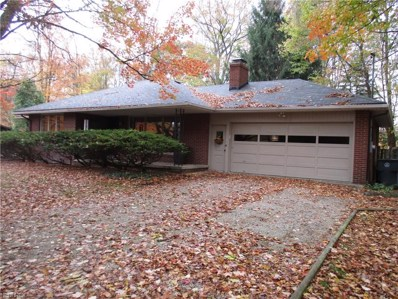 1130 High View Dr, Wadsworth, OH 44281 - MLS#: 3956148