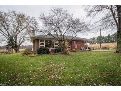 5733 State Route 212, Mineral City, OH 44656 - MLS#: 3956346