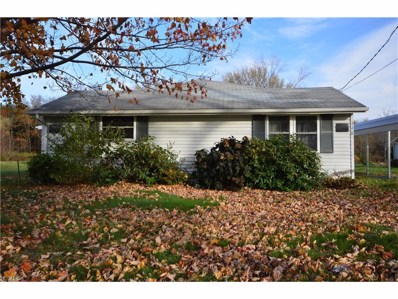 348 N Amboy Rd, Conneaut, OH 44030 - MLS#: 3956448