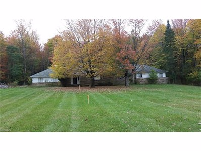 12879 County Line Rd, Chesterland, OH 44026 - MLS#: 3956893