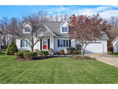 6562 Dellhaven, Mentor, OH 44060 - MLS#: 3957259