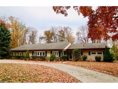 114 Wellesly Blvd, Concord, OH 44077 - MLS#: 3957487