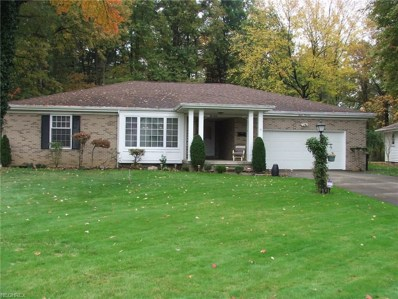 713 Truesdale Rd, Youngstown, OH 44511 - MLS#: 3957579