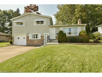 2920 Hamman Dr, Youngstown, OH 44511 - MLS#: 3957618