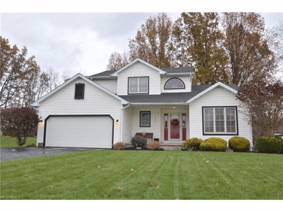 5315 Sycamore Hill Dr, New Middletown, OH 44442 - MLS#: 3957772