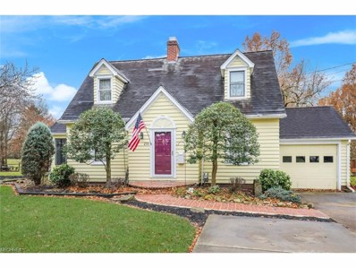 231 High St, Canfield, OH 44406 - MLS#: 3957791