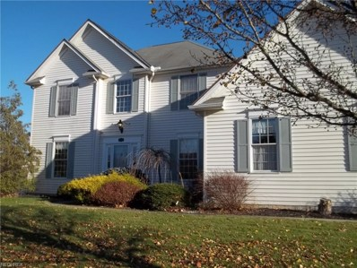 810 Red Tailed Ln, Amherst, OH 44001 - MLS#: 3957812