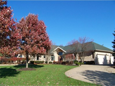 4405 Lakeview Glen Dr, Medina, OH 44256 - MLS#: 3957914