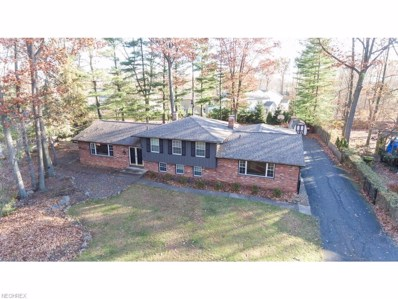 103 Scenic View Dr, Copley, OH 44321 - MLS#: 3958645