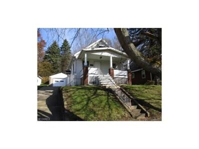 53 Wilhelm St, Struthers, OH 44471 - MLS#: 3958657